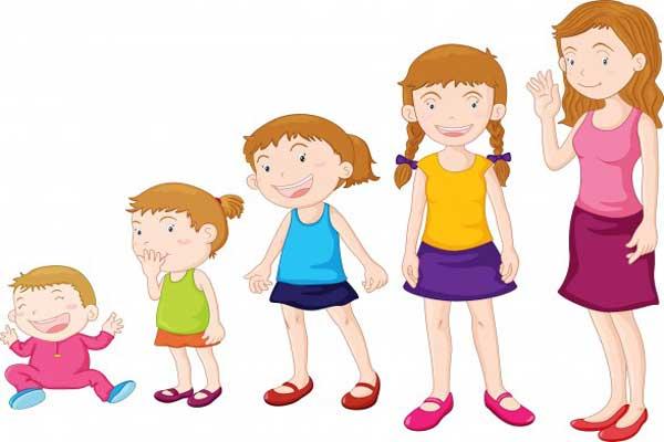 مراحل رشد کودک تا بزرگسالی